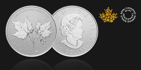 Stříbrná mince Maple Leaf, 1/1 oz